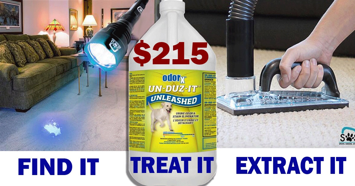 Carpet Cleaning Supplies Equipment Disaster Restoration Albuquerque Nm